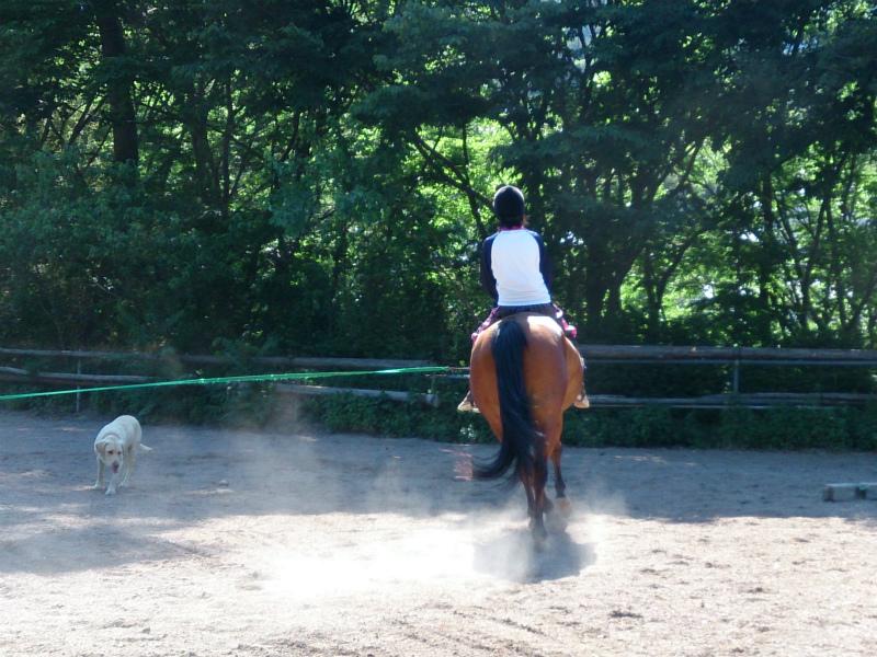 信州上田騎馬同好会 娘 久しぶりの乗馬