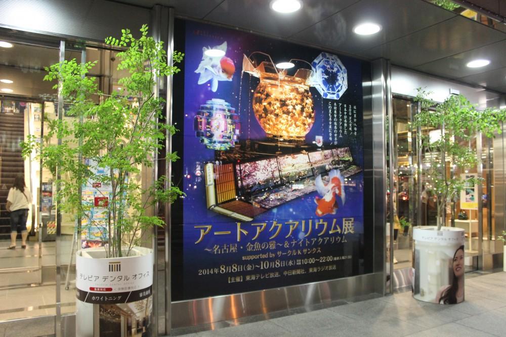 名古屋★Art Aquarium   アートアクアリウム