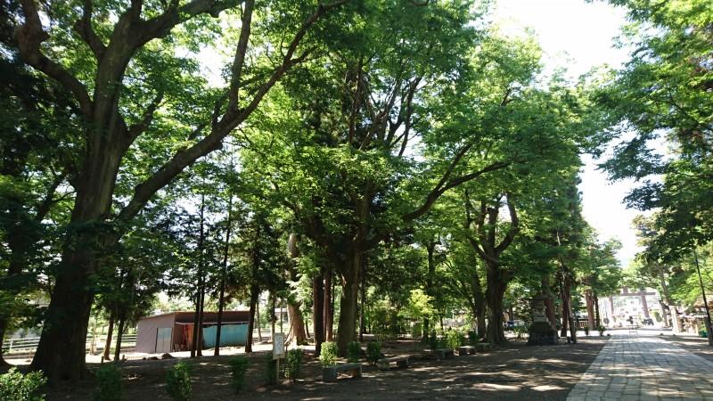 千曲市八幡にある武水別神社