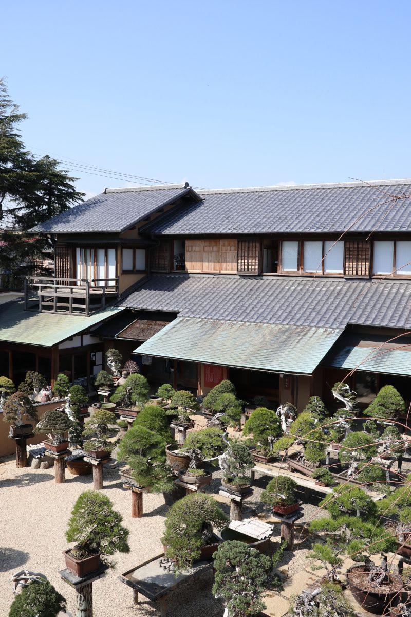 春花園 BONSAI 美術館